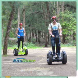 off Road Electric Bike Self Balancing Scooter Chariot for Sale pictures & photos
