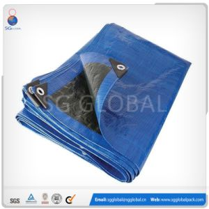 China Factory Black Blue PE Tarpaulin pictures & photos