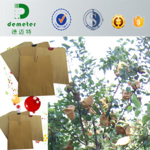 Water Resistant Customized Biodegradable Paper Fruit Grow Protection Bag Supplier pictures & photos