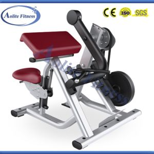 Plate Loaded Biceps Curl Machine / Crossfit Gym Equipment pictures & photos