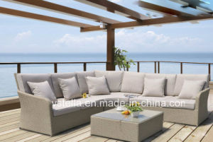 Outdoor Garden PE Rattan Furniture pictures & photos