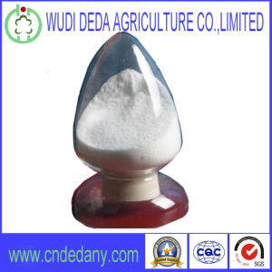 Methionine Feed Additives High Quality pictures & photos