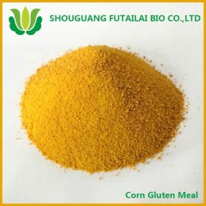 Corn Gluten Meal for Animal Feed (60%protein)