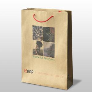 Custom Kraft Paper Bag /Shopping Paper Bag Fk-163 pictures & photos