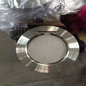 Ss Wafer Type H74 Check Valve pictures & photos