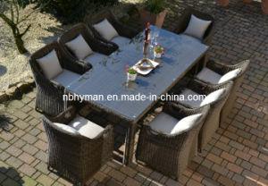 Garden Furniture (FSS-1620)
