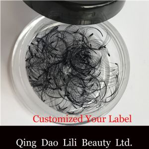 2017 Knot Free 5D Pre Made Volume Fans Individual Eyelash Flare Cluster 5D Lotus Volume Lashes Jar Bulk Loose 5D Lashes pictures & photos