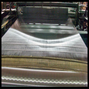 AISI316 Stainless Steel Wire Mesh pictures & photos