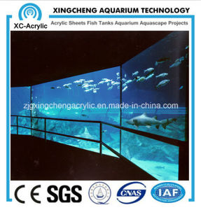 Acrylic Sheet for Wall Aquarium pictures & photos