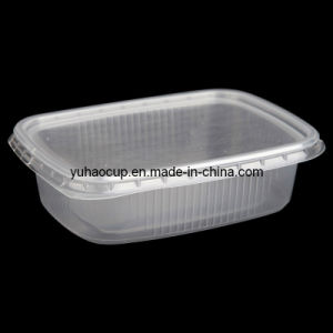 Disposable Food Container (YHP-155) pictures & photos