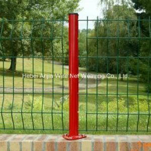Welded Wire Mesh Garden Fence with (CE and SGS) pictures & photos