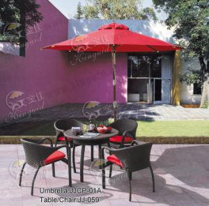 Outdoor Furniture, PE Rattan Furniture, (JJ-059TC) pictures & photos