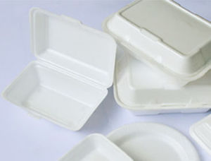 Take Away Food Container Recyclable Making Machine (DH50-71/90S) pictures & photos