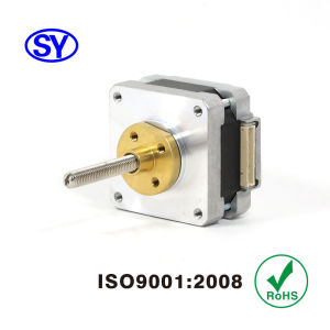 39mm 1.8 Deg High Accuracy Electrical Stepper Motor pictures & photos