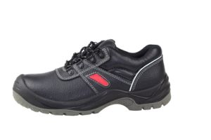 Trainer Safety Shoes with CE Certificate (SN1388) pictures & photos