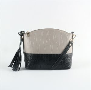 Fashionable Stitching Crossbody Bag Embroidered Women Bag pictures & photos