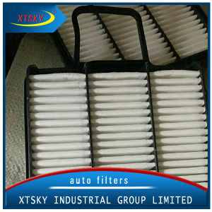HEPA Air Filter (1109102-K00) for BMW pictures & photos