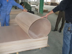 Hot Commercial Plywood Flexible Plywood / Bending Plywood pictures & photos