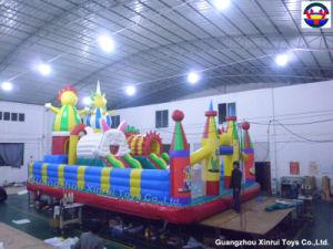 2014 Hottest Inflatable Amusement Park (XRFC-507)