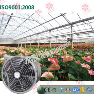 Ce Certificate Air Circulation Fan for Greenhouse