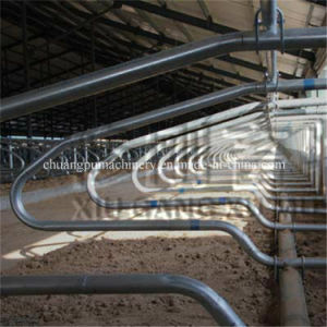 Livestock Equipment Cow Free Stall with Galvanizing Layer pictures & photos
