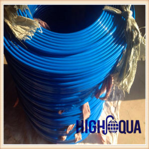 Chinese High Quality High Pressure Spray Paint Hose with Steel Wire Braid pictures & photos