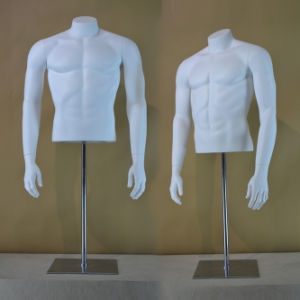 Fiberglass Male Torso Mannequin From Yazi Mannequin pictures & photos