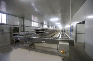 Engineers Overseas Service Available Electric Baking Tunnel Oven Price pictures & photos