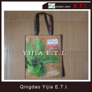 Laminated Non Woven Shopper Tote Bag pictures & photos