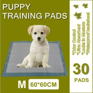 Scented Dog Training Urine Pad 60*45cm pictures & photos