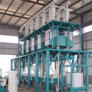 Flour Mill Project for Wheat/Maize/Corn (6FTYF-40) pictures & photos