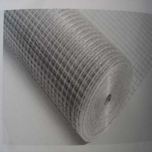 Galvanized / PVC Coated Welded Wire Mesh pictures & photos