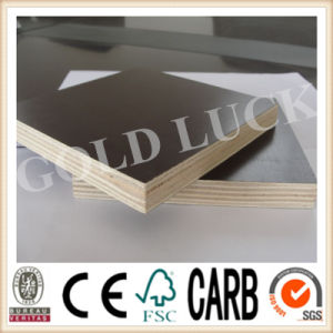 Gold Luck Film Faced Roof Template Plywood pictures & photos