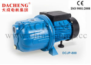 Dcjp (garden pump) Series pictures & photos