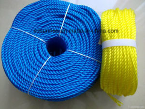 PE Monofilament Twisted Rope pictures & photos