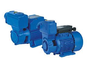 TPS Water Pump