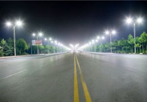 205W LED Street Lamp (BDZ 220/205 55 Y) pictures & photos