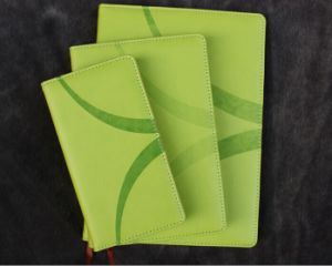 Diary Set / Desktop Diary / Pocket Size Diary pictures & photos