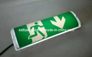 8W Maintained LED Emergency Light pictures & photos