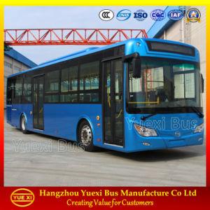 12 Meter BRT City Bus (6120)