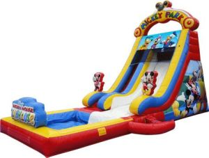Mickey Water Slide, Fun Water Slide Inflatable, Hot Sale Water Slide pictures & photos