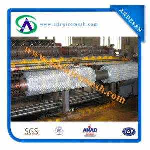 Best Quality ISO9001 Hexagoanl Wire Mesh Manufacturer pictures & photos
