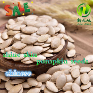 Chinese Shine Skin Pumpkin Seeds 8-11mm pictures & photos