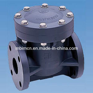 Fully Plastic Swing Check Valve pictures & photos