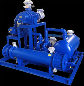 Jzj2b1200-4.2.1 Roots Water-Ring Vacuum Pump