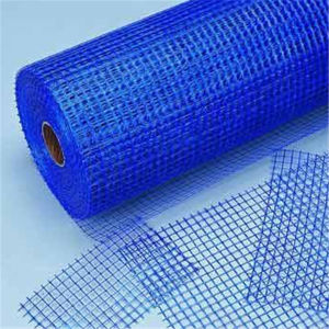 High Quality Fiberglass Mesh Factory pictures & photos
