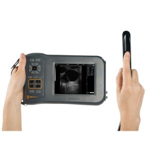 Best Deals Animals Pregnancy Test Portable Veterinary Ultrasound (Farmscan L60) pictures & photos