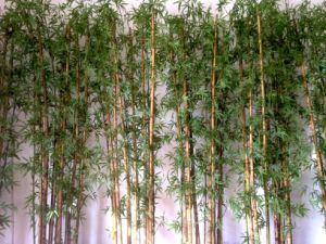 Artificial Bamboo Plants with Pot pictures & photos
