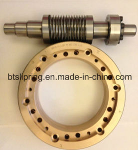 Precise Worm/Gear From Chinese Factory Wholesale pictures & photos