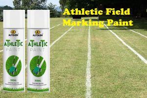 Aerosol Athletic Field Marker for Grass Line Marking pictures & photos
